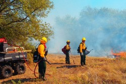 The Nature Conservancy team shares feedback on test burn