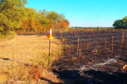 TetraKO stops progress of fire in test burn situation